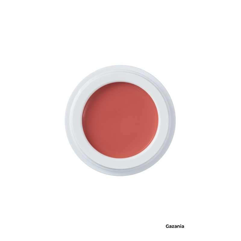 manasi 7 all over colour makeup gazania jar