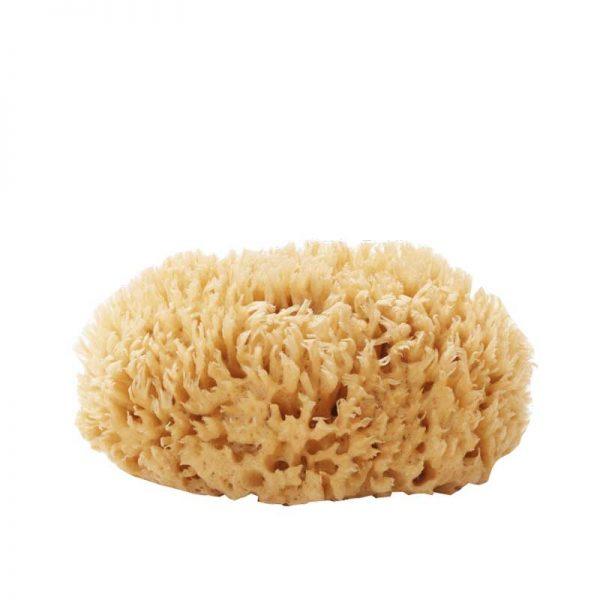 Well Kept Sea Sponge – wool cut large